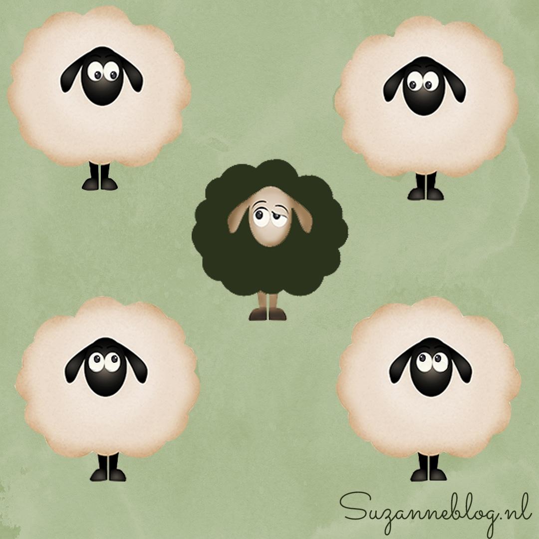 omring je met wijze schapen die je bemoedigen